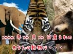 生年月日から占う動物診断占い サムネイル