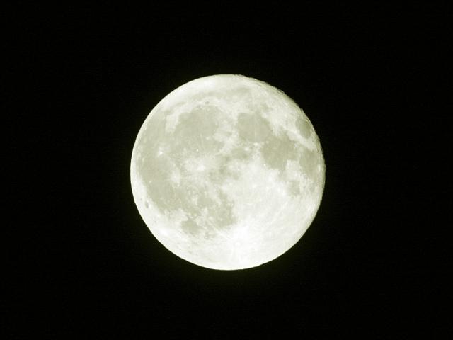 「月が綺麗ですね」に対する秀逸な返答
